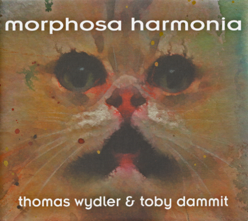 shop_morphosa_cover